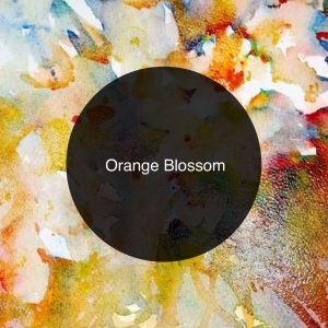 The Candy Perfume Boy's Guide to Orange Blossom