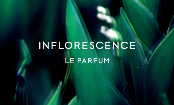 Inflorescence Le Parfum by Byredo