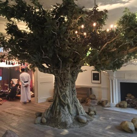 A Boswelia Tree at Jo Malone's Incense & Cedrat Launch