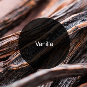 'The Candy Perfume Boy's Guide to Vanilla' - Shortlisted for the Jasmine Bloggers Award