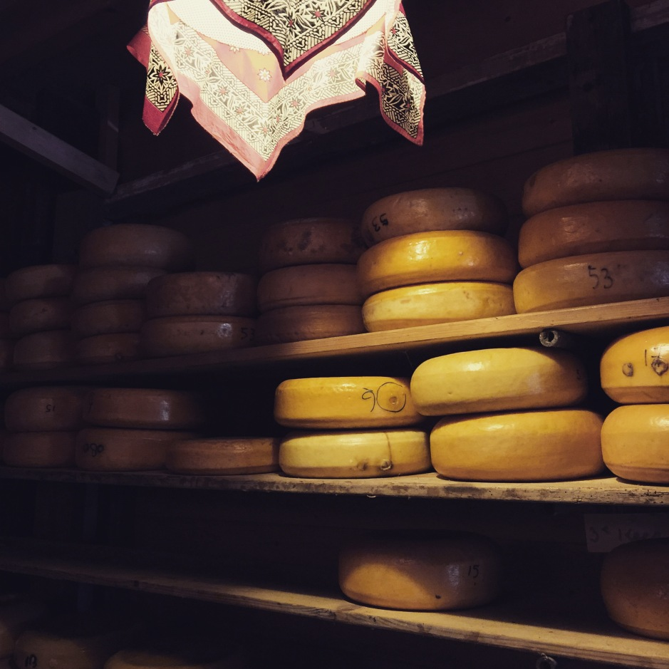"""A room filled to the brim with Gouda. The smell is intoxicating, milky and sour #ScentedStories #Amsterdam"""
