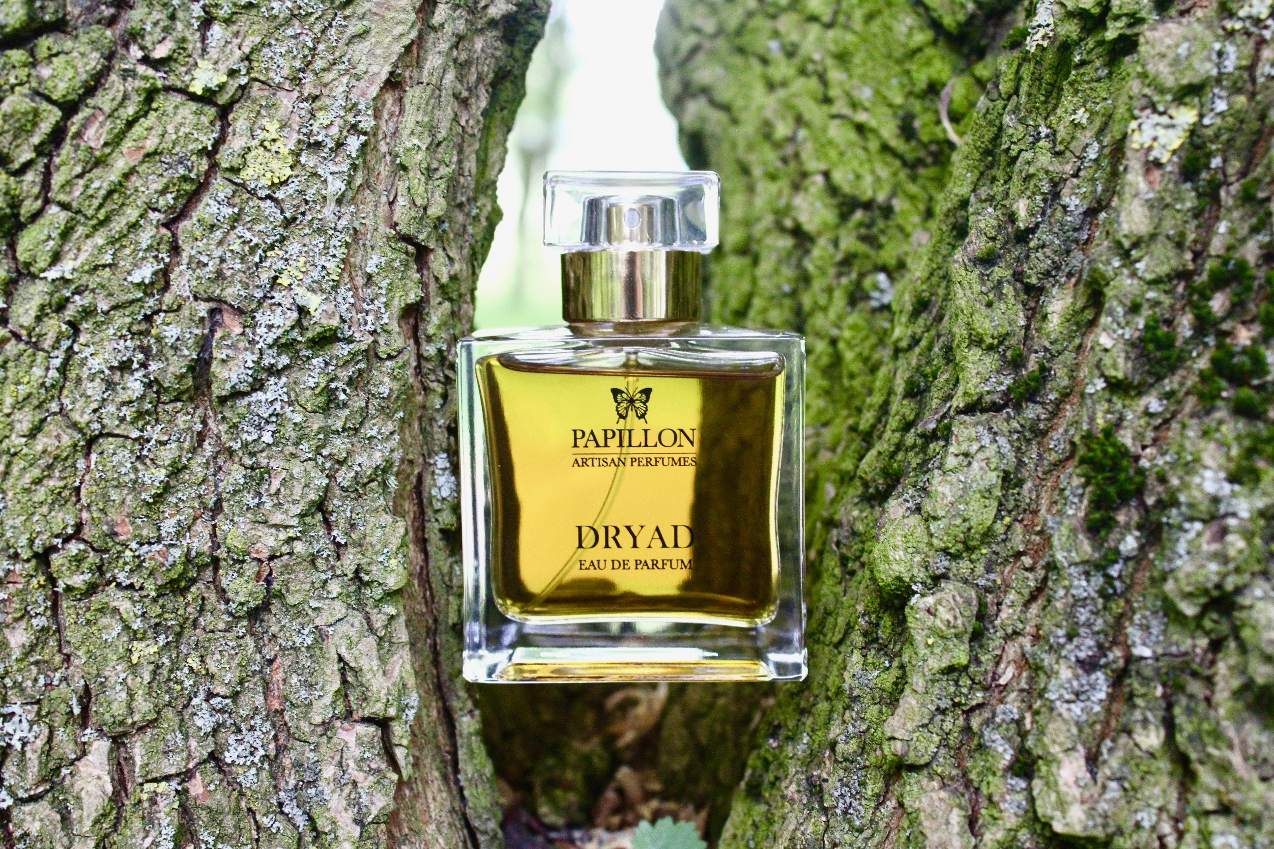 Dryad: Spirit of the Forest