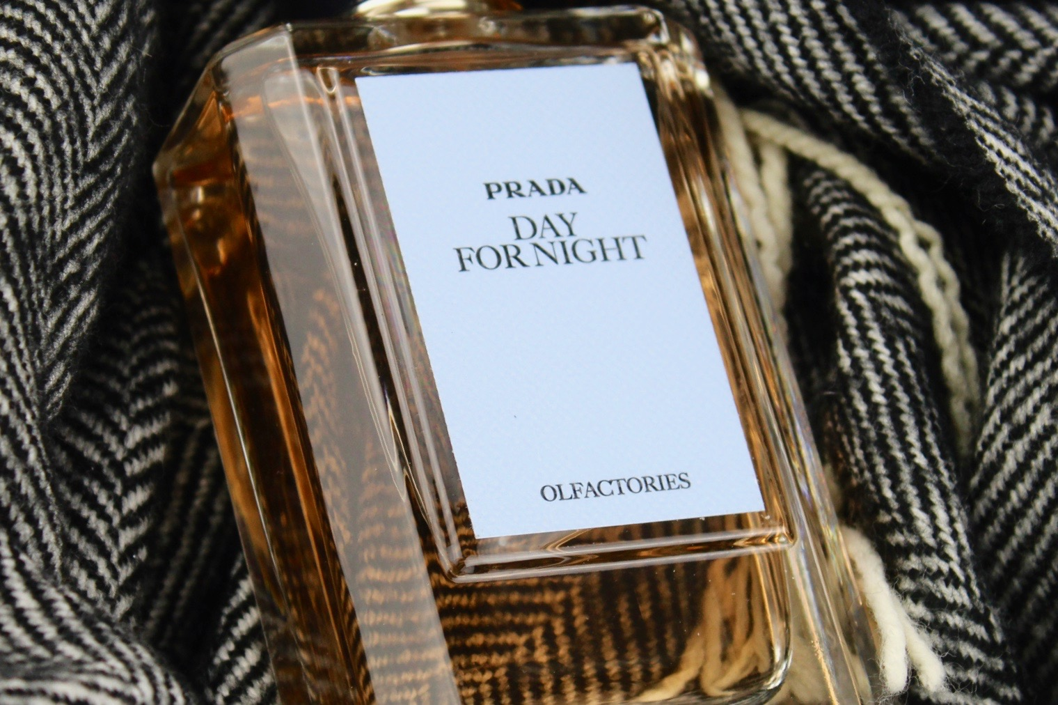 0b300644 Speed Sniff: Day for Night by Prada Olfactories – The Candy Perfume Boy
